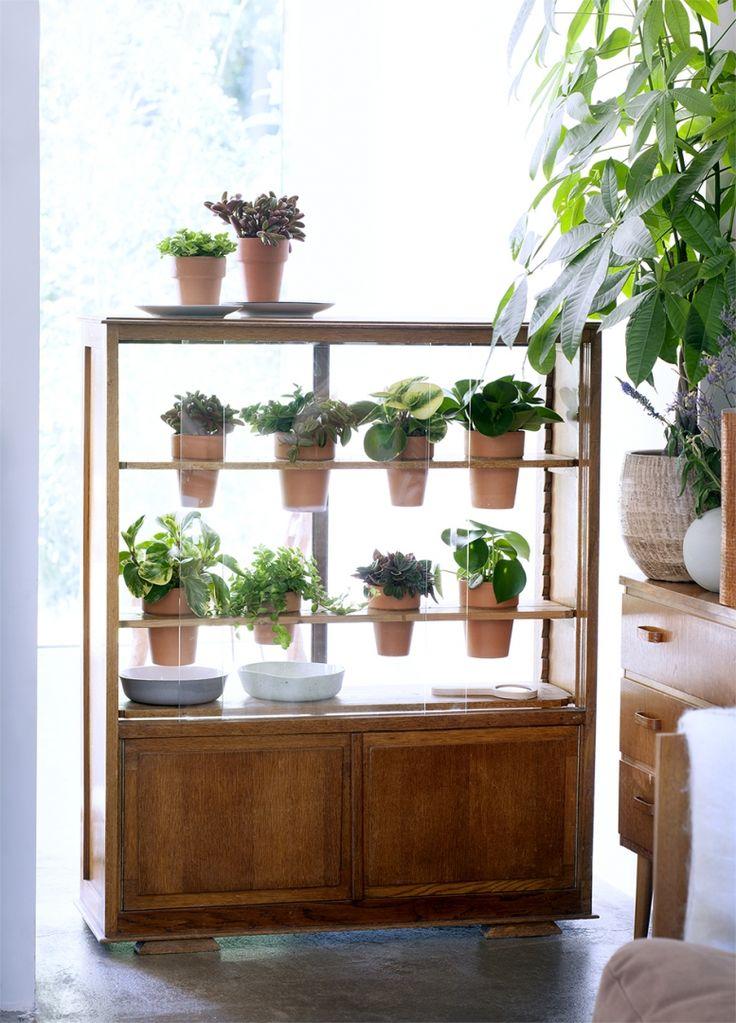 DIY | Van kastje naar plantenkasje - Woonblog StijlvolStyling.com (Urban jungle vintage do it yourself with Peperomia)
