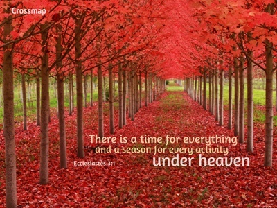There is a time for everything,  and a season for every activity under heaven  Ecclesiastes 3:1 ----- Go get 'em Ren! (A time to mourn and a time to DANCE)