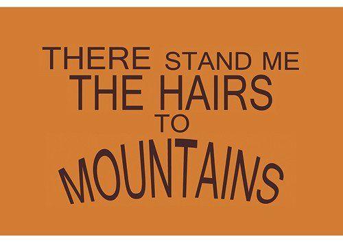 Magnet 8,5x5,5 cm +++ DENGLISCH von modern times +++ THERE STAND ME THE HAIRS TO MOUNTAINS - MAGNETE +++ MAGNETMANN © Tom Bäcker: Amazon.de: Bürobedarf & Schreibwaren