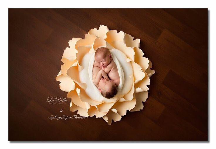 Newborn posing paper flower in mix of creams  https://www.etsy.com/au/listing/259692243/newborn-posing-paper-flower-photoprop?ref=shop_home_active_3