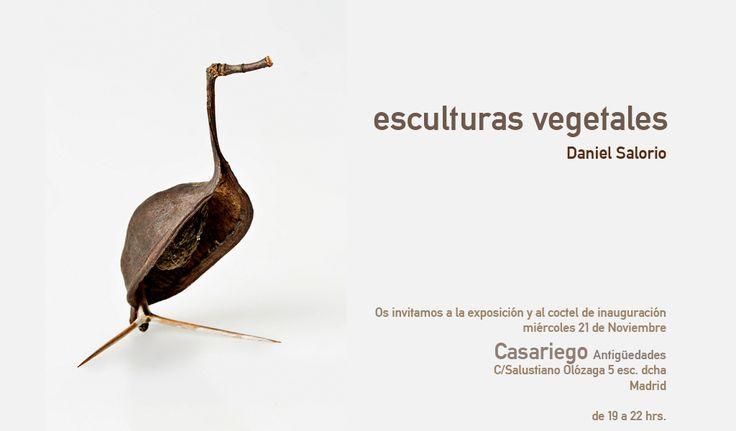 esculturas vegetales