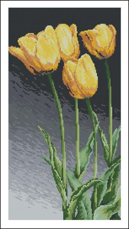 Gallery.ru / Фото #8 - 12 - TATO4KA6 / żółte tulipany 1/8