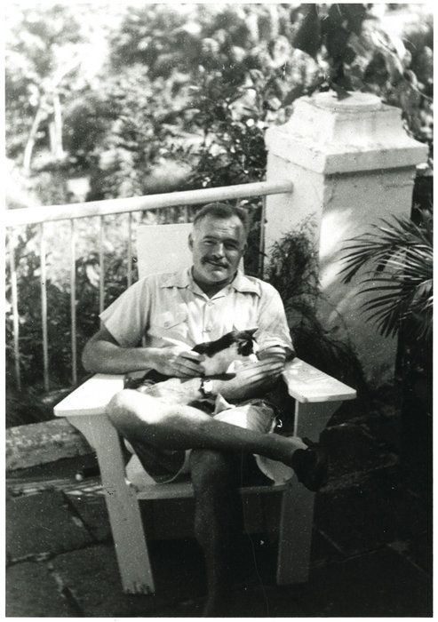 Ernest Hemingway with his Cats: Cat People, Polydactyl Cat, Author Ernest, Cool Houses, Ernest Hemingway, Famous People, Keys West Florida, Hemingway Cat Polydactyl, Hemingway Cats Polydactyl