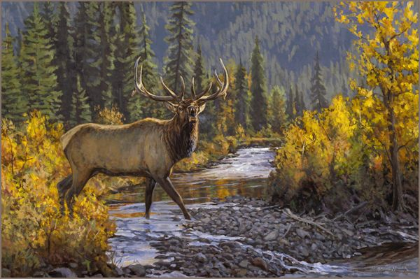 American Paint And Wallpaper Fall River Rocky Mountain Elk Oil Painting Oil Painting By Wildlife