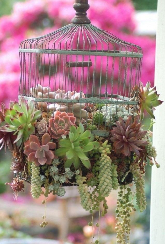 gartendeko sukkulenten alter vogelkäfig ideen hängend