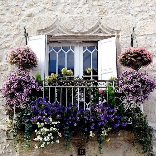 Who wouldn't love these balcony covered flowers? Imagine waking up to these! Lovely!