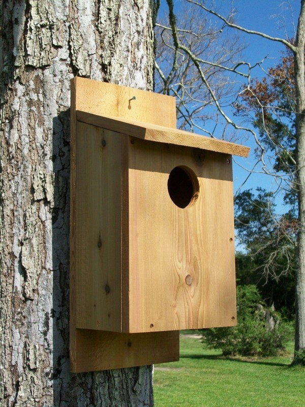 1000+ images about owl houses pe pinterest | owl, conservare și house