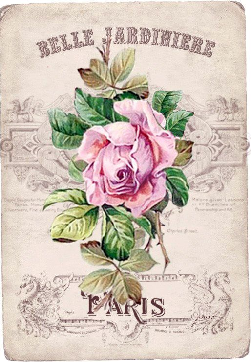 Vintage rose Digital collage p1022 Free for personal use...