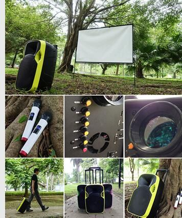 All in one portable system use it for meetings, public address, karaoke, movies.