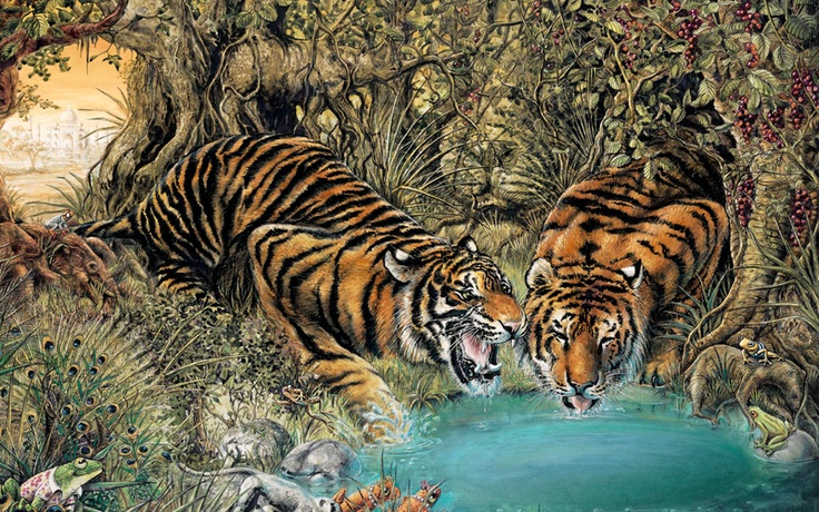 Graeme Base - Tigers