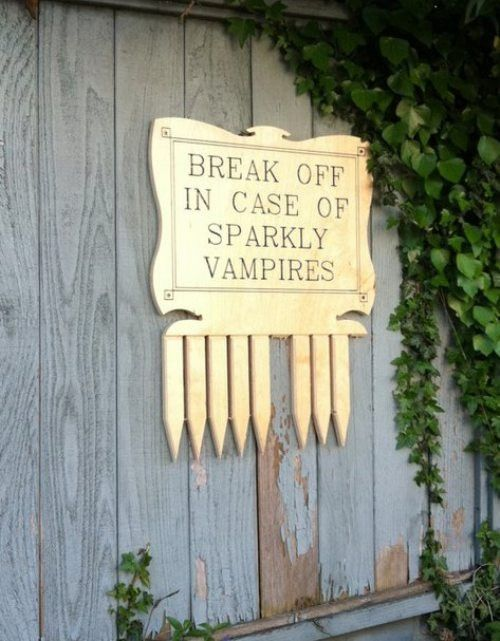 LOL-- Halloween decor? I love this,make me one?Ideas, Halloween Stuff, Halloween Decor, Halloween Costumes, Twilight, Sparkly Vampires, Edward Cullen, Funny, Team Jacobs