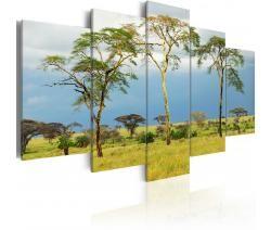 Quadro moderno Flora africana