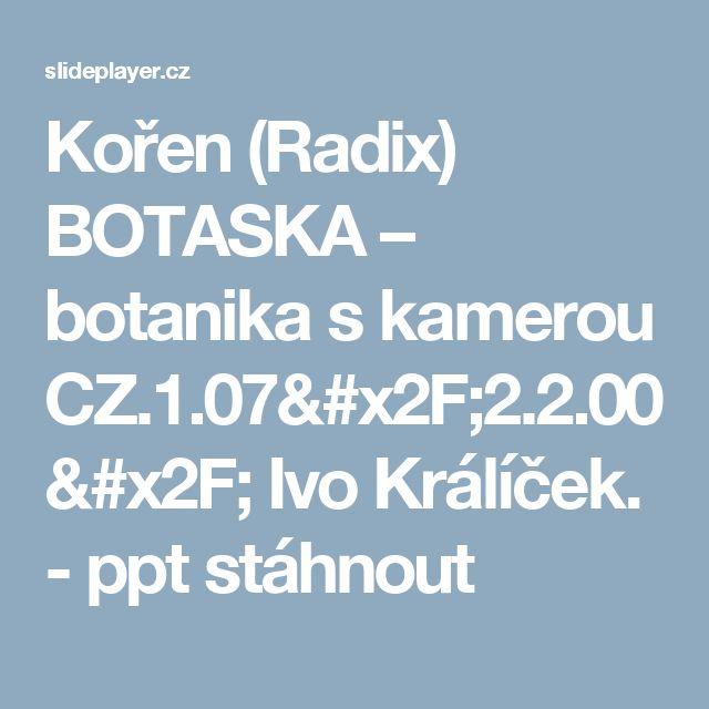 Kořen (Radix) BOTASKA – botanika s kamerou CZ.1.07 2.2.00  Ivo Králíček. - ppt  stáhnout  92882c9933