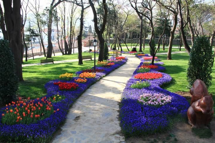 Emirgan Korusu Istanbul Ibbpr Ibb Park Garden Flowers Nature Season Pinterest