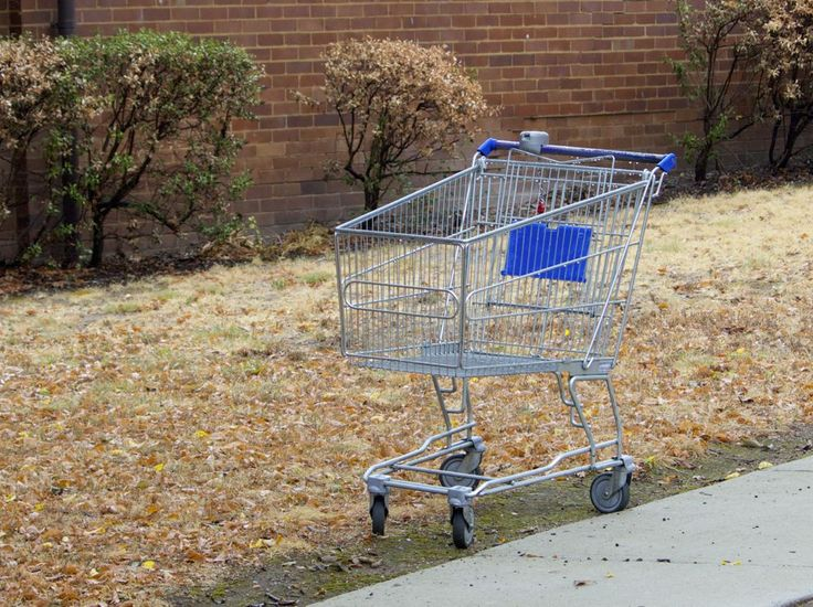 A common sight on the streets nearby. A lost and lonely supermarket trolley, used to ferry groceries the three blocks from the shops and then abandoned, thoughtfully pushed off the footpath so as not to be a nuisance.
