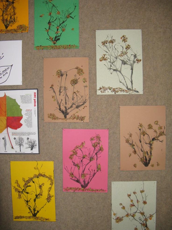 Podzimní keře, tuš a listová drť