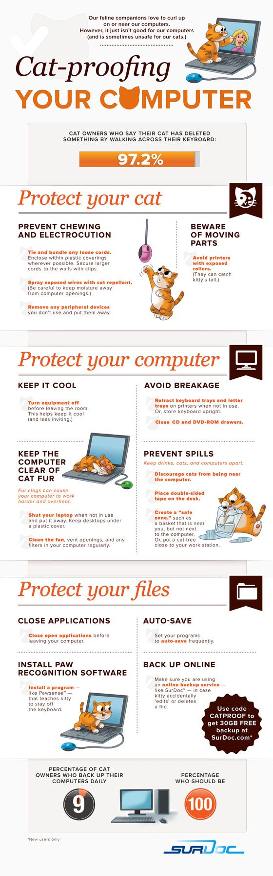 Cat-proof your computer! This is a serious problem for many people LOL (but seriously..)