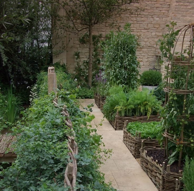 65 Best Potager Gardens Images On Pinterest: 17 Best Images About Potager
