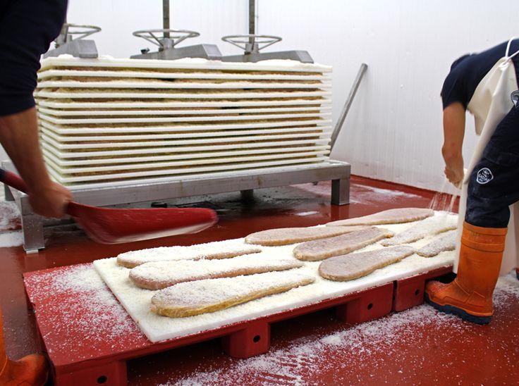 Salga e prensa das ovas de atum de almadraba na fábrica da Gadira