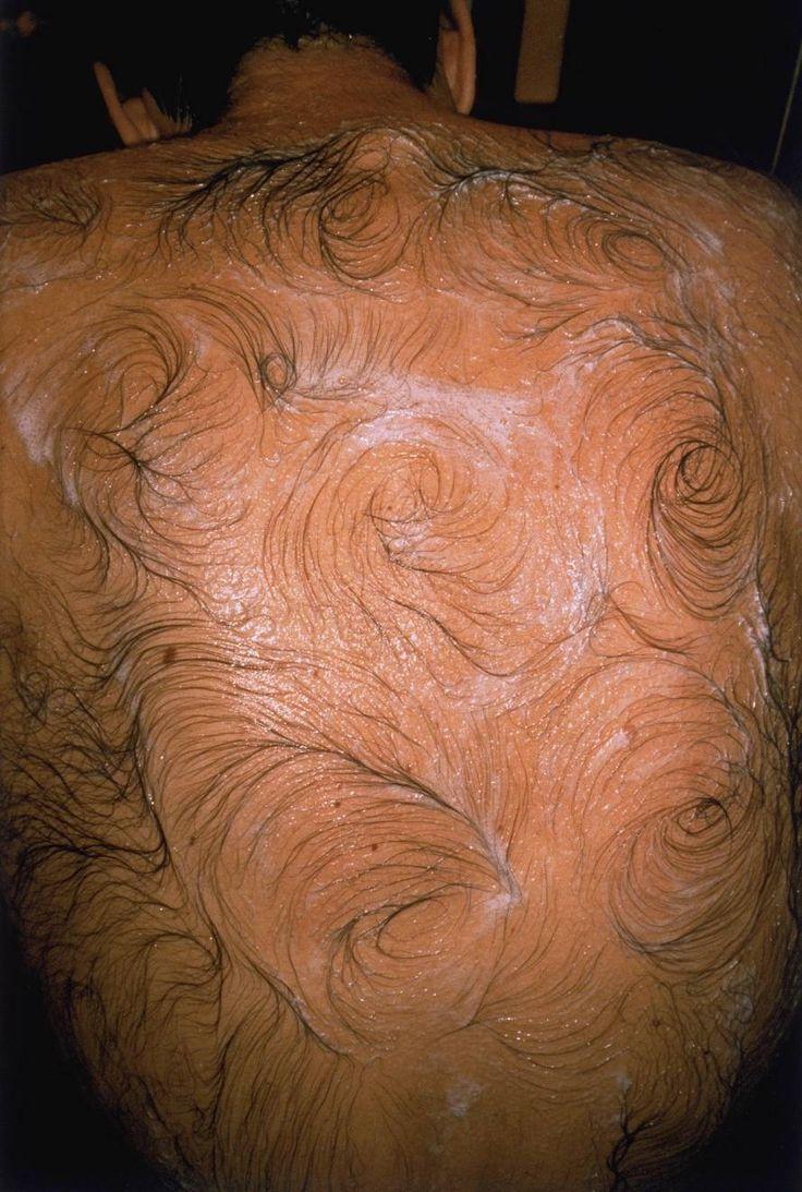 Mona Hatoum  Van Gogh's Back 1995