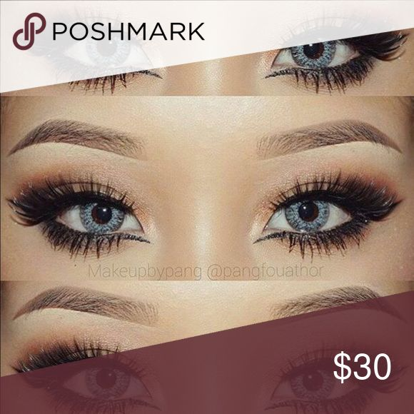 grey contacts asian