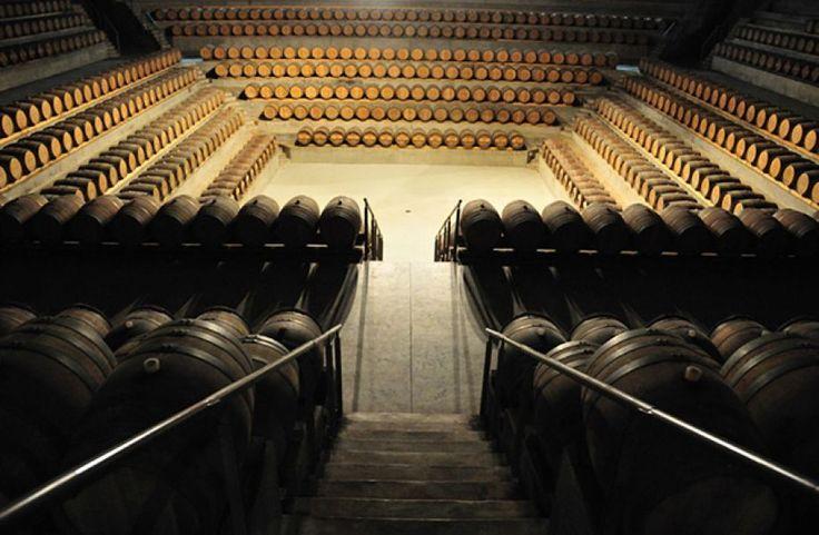 ROCCA DI FRASINELLO: la cantina teatro
