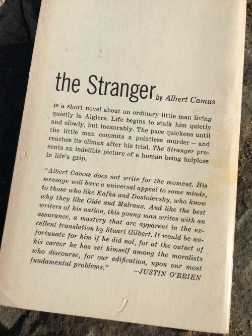 the best the stranger albert camus ideas the  the 25 best the stranger albert camus ideas the stranger camus albert camus books and the stranger