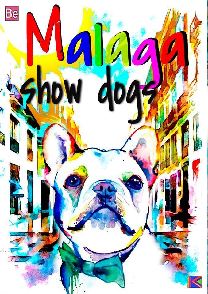 Malaga Show dog