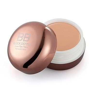 Pro Conceal HD Makeup Cosmetics Concealer Corrector Brush   Powder Brush