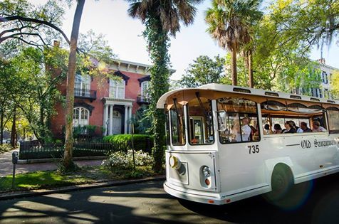Hop on an Old Savannah Tour's Trolly for an unforgettable adventure! And they are pet friendly! (for those friendly pooches who have  good manors!)