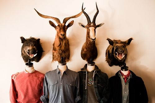 Like what they did here: Window Display, Animal Heads, Taxidermy Photography, Antlers, But Stores, Store Displays, Around The Houses, Stores Display, Interiors Ideas