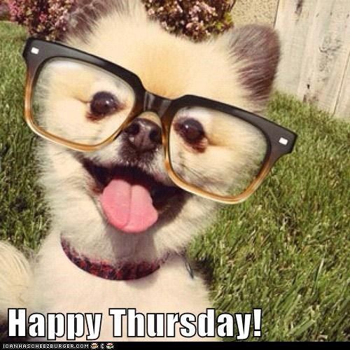 Funny Thursday Morning Meme : Best images about happy thursday on pinterest
