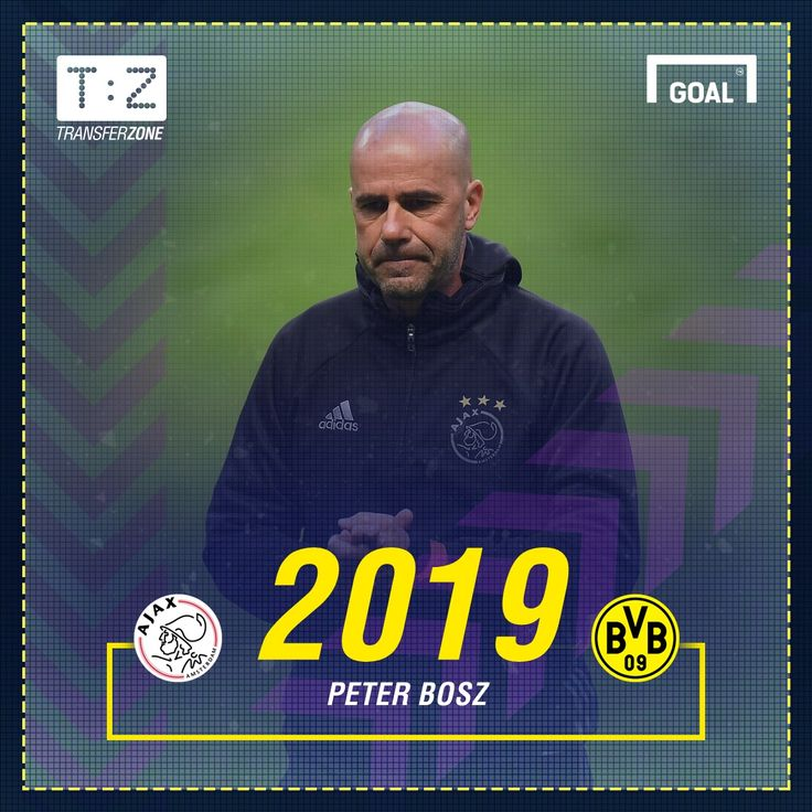 GFX Peter Bosz Dortmund