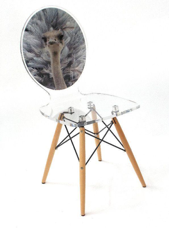 chaise acrylique graph pieds bois autruche. Black Bedroom Furniture Sets. Home Design Ideas