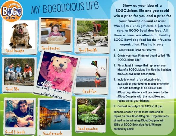"What does ""BOGOLicious"" mean to you? Tell us and you could win prizes for yourself and all natural, healthy BOGO Bowl food for your favorite shelter or rescue! #BOGOBowl  #GoodDog"