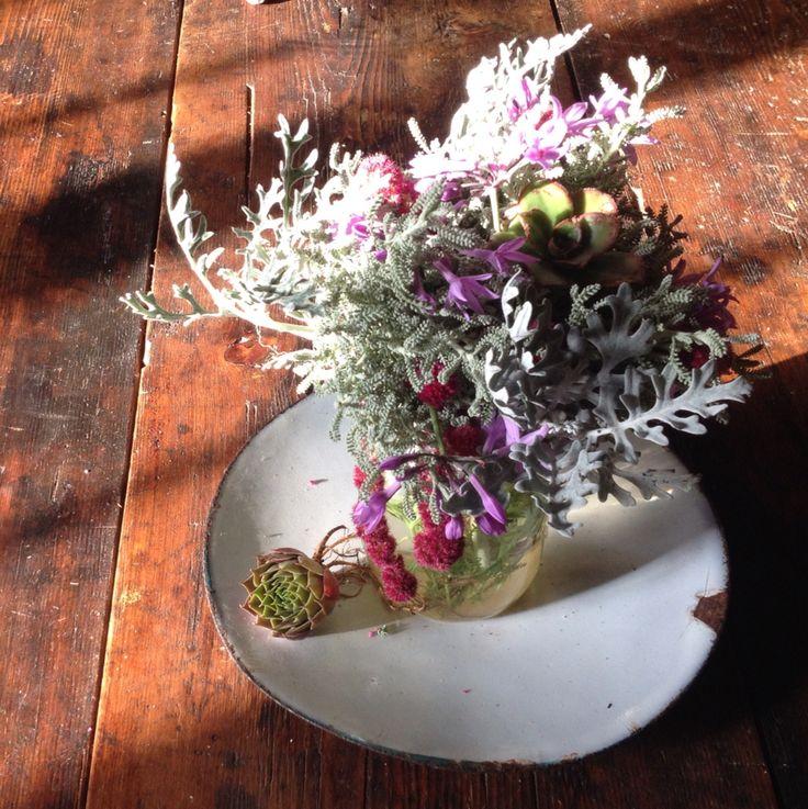 Succulents & Amarantus for Max&Morena's wedding party
