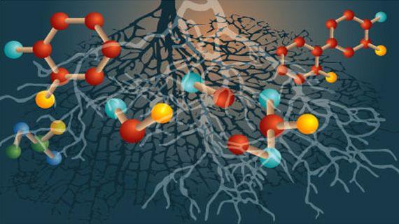 En este artículo se describe el potencial que ofrece la biotecnología vegetal para abordar la situación sobre la producción de substancias bioactivas con actividad terapéutica y de diagnóstico.