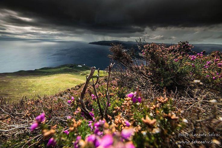 Holy Izland