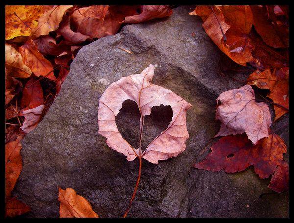 Heart by Chibi-Shuriken.deviantart.com on @DeviantArt