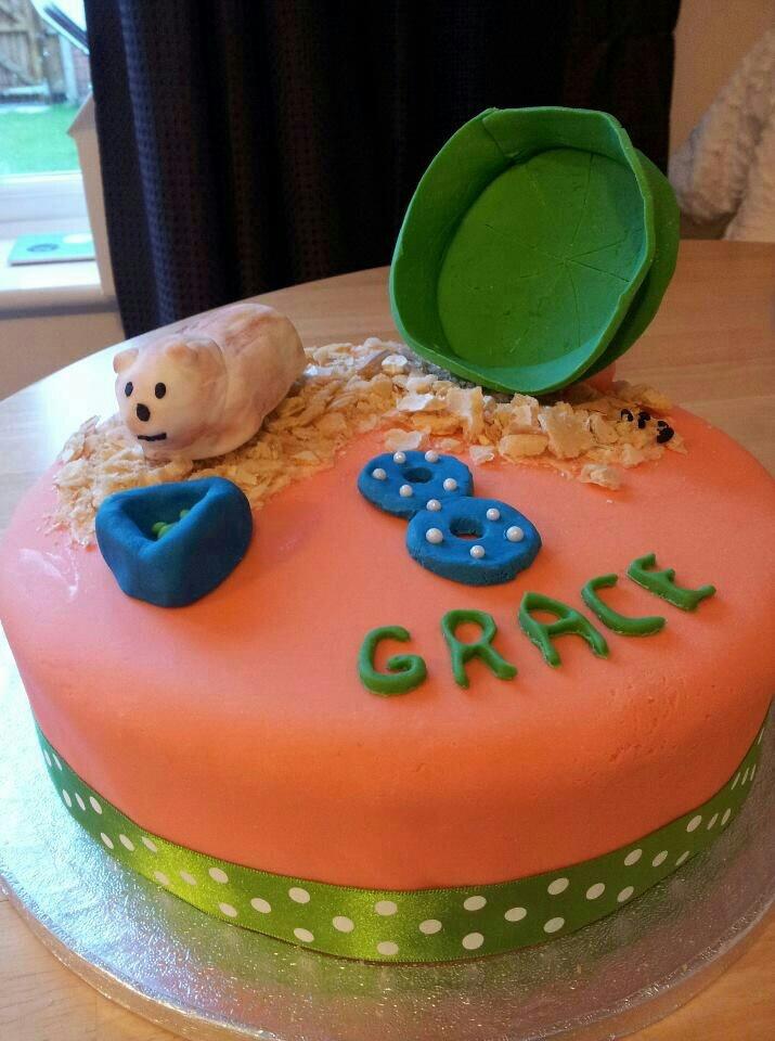 Best Cake Hamster Images On Pinterest Hamster Food Hamsters - Hamster birthday cake