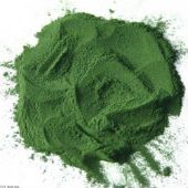 SPIRULINA - Omega-3 source for Vegans