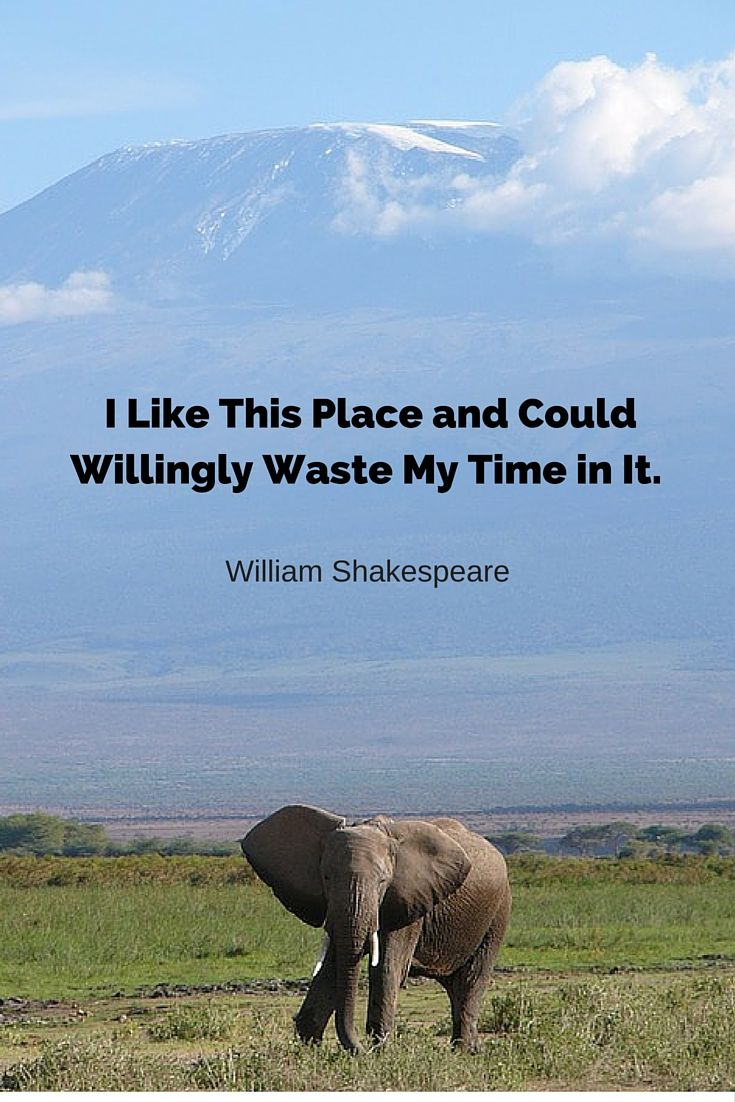 I like this place and could willingly waste my time in it - William Shakespeare. #nature #llandscape #quote