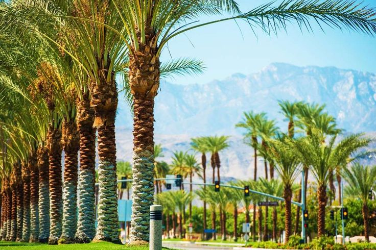 """Best of California on a Budget:      BEST DESERT VACATION: PALM SPRINGS  This resort town was an iconic """"home away from home"""" for many early Hollywood stars and now provides an affordable and eclectic mix  of movie nostalgia tours, midcentury modern home design, and desert landscapes for hiking and exploring. Joshua Tree National Park is a  45‐minute drive away and Desert Hot Springs Spa Hotel is even closer ﴾non‐guests can take a dip in the natural springs for $3 to $8,  depending…"""
