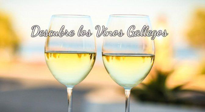 Cata-de-vinos-gallegos