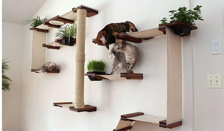 12 parcours g niaux pour votre chat acrobate appart. Black Bedroom Furniture Sets. Home Design Ideas
