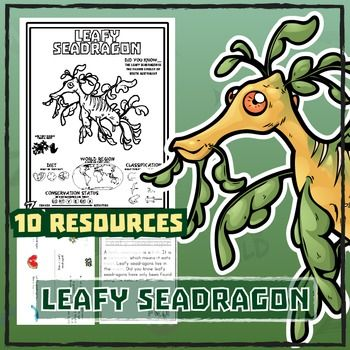 leafy seadragon 10 resources coloring pages reading activities