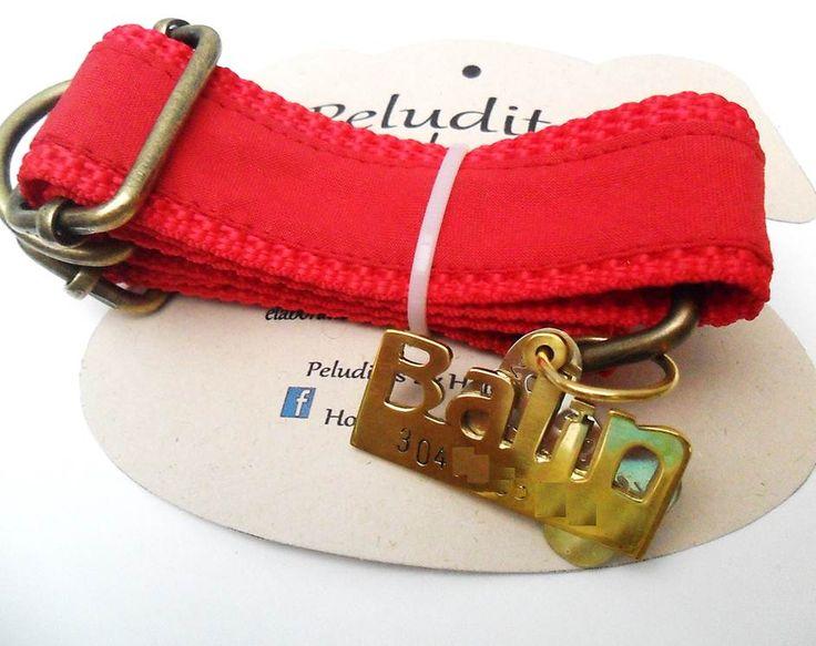 Collar Ajustable Corredizo en reata de nylon combinada con tela roja y Placa de Identificación en bronce brillante.