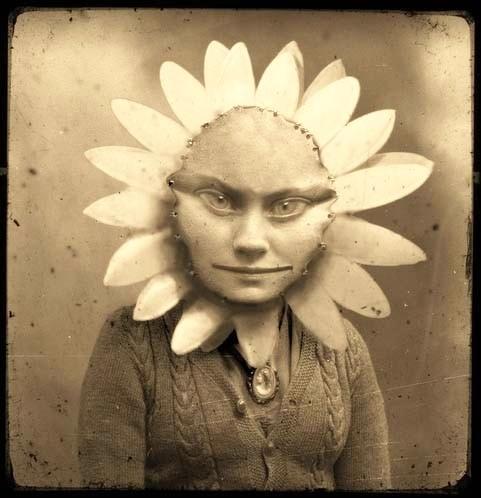 SHUDDER: Girls, Oddities, Weird Stories, Flowers Children, Vintage Photographers, Bad Dreams, Dark Side, Flower Children, Sweet Dreams