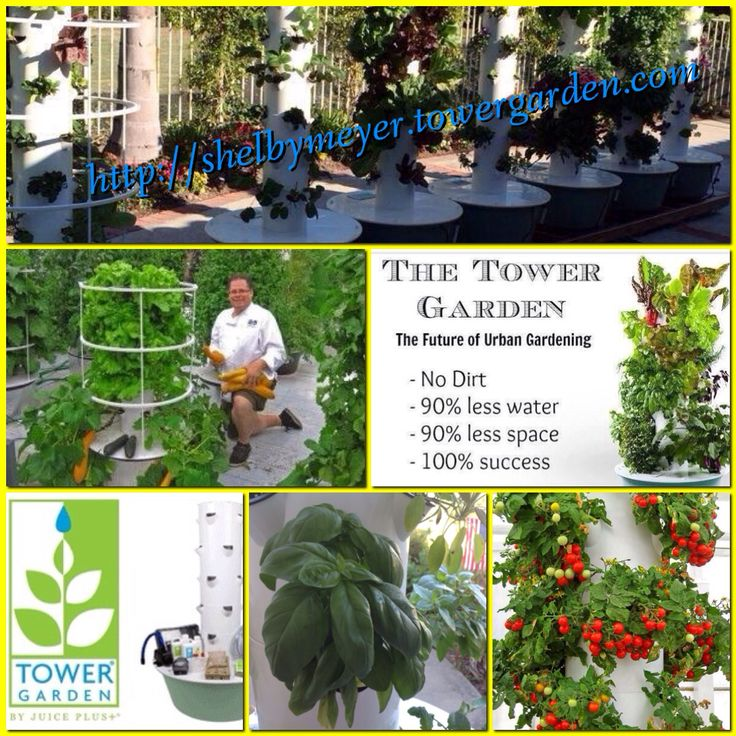139 Best Juice Plus And Tower Garden Images On Pinterest | Tower Garden,  Towers And Juice