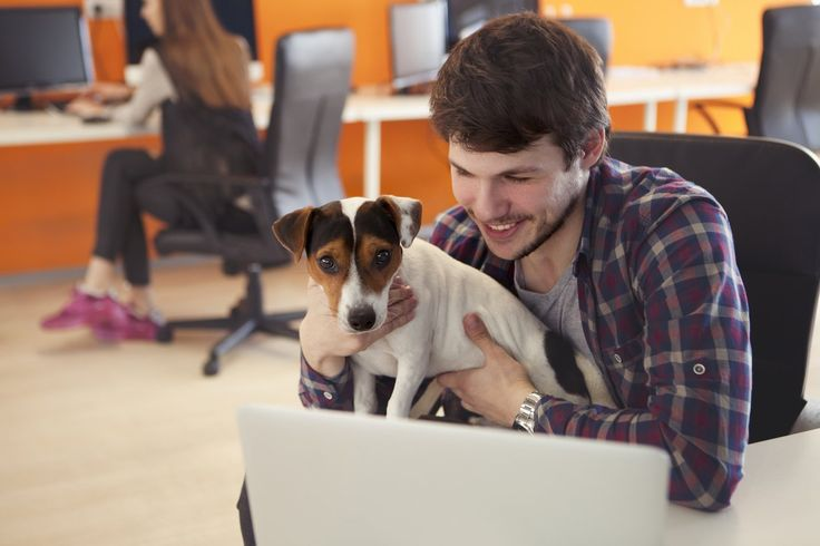 Friday, June 24 is Take Your Dog to Work Day, created in 1999 and modeled after the wildly popular Take Your Daughter to Work Day, which eventually became Take Your Child to Work Day. The folks at Pet Sitters International (PSI), an educational association for professional pet sitters, founded Take Your Dog to Work Day [...]